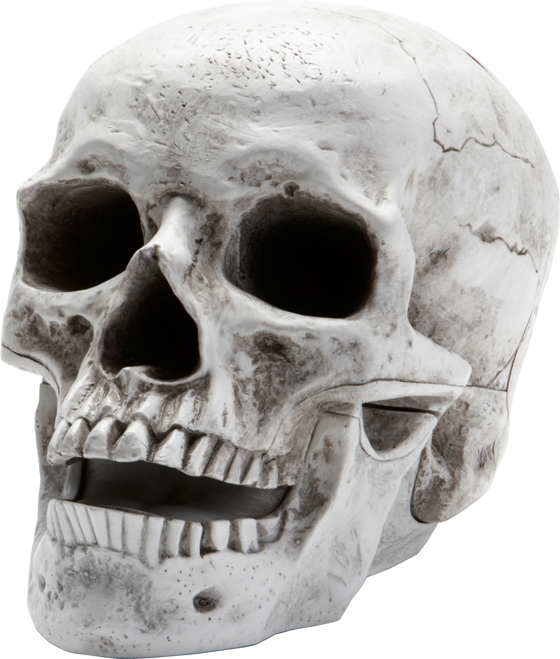Skull PNG - 15807