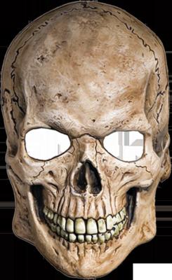 Skull PNG - 15814