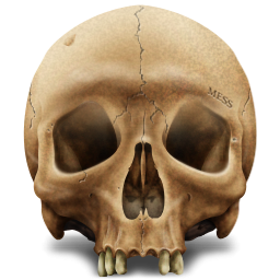 Skull PNG - 15811