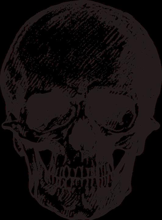 Skull, Vintage, Old, Horror, Macabre, Death, Halloween - Skull PNG