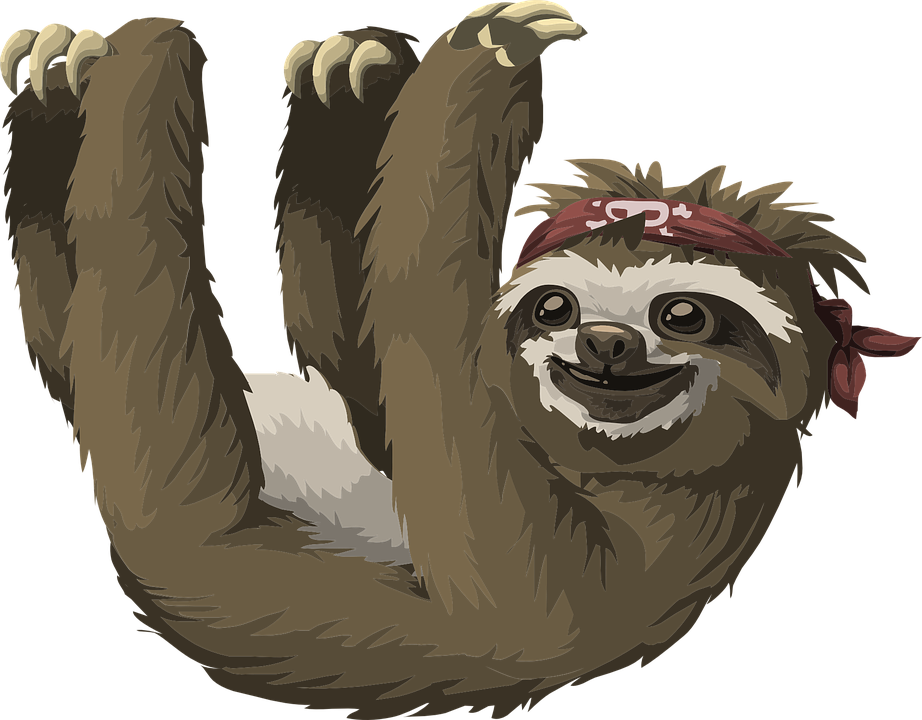 Sloth PNG - 6274