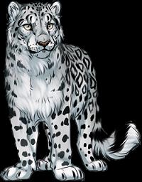 Snow leopard by TokoTime PlusPng.com  - Snow Leopard PNG