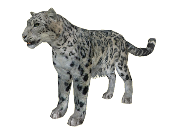 SnowLeopard Ludozoo - Snow Leopard PNG