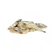 Home / Shop / Seafood Segar / Sotong - Sotong PNG