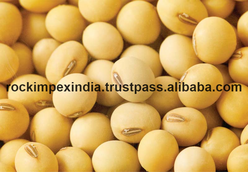 India Soybean Seed, India Soybean Seed Manufacturers and Suppliers on  Alibaba pluspng.com - Soybean Seed PNG
