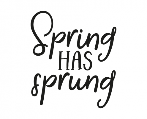 Spring has sprung - Spring Has Sprung PNG