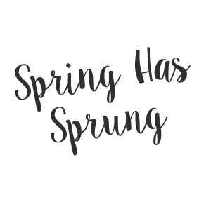 We are so excited to stock this stunning new brand that is brought to you  by the same people behind luxurious brands Betty Barclay and Vera Mont. - Spring Has Sprung PNG
