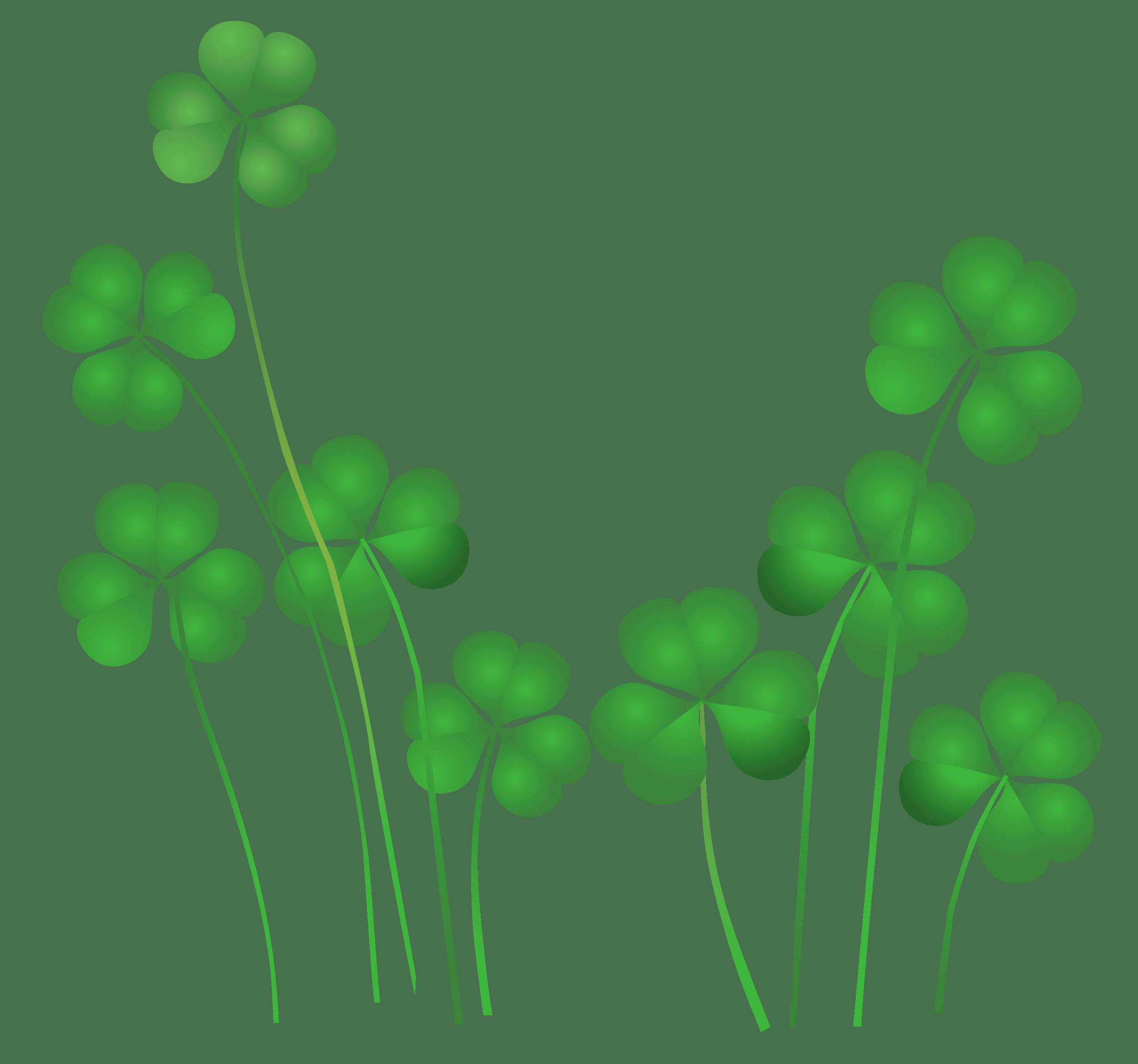 St Patricks Day PNG