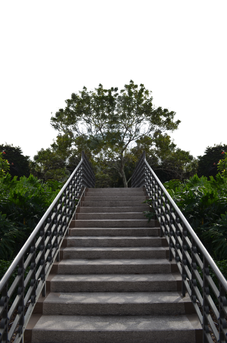 Staircase in Forest PNG Background Stock 0371 by annamae22 PlusPng.com  - Stairs PNG HD