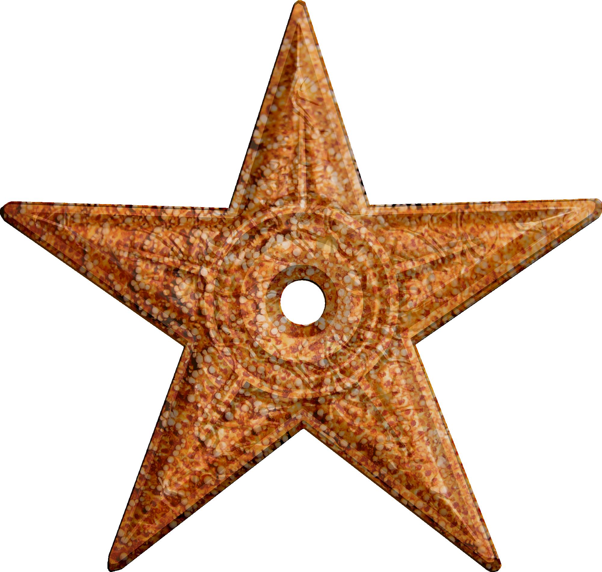 Starfish PNG - 15942