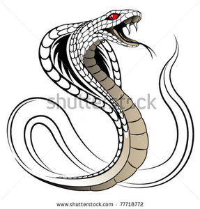 Stock Vector Snake Cobra In The Form Of A Tattoo Image - Snake Tattoo PNG
