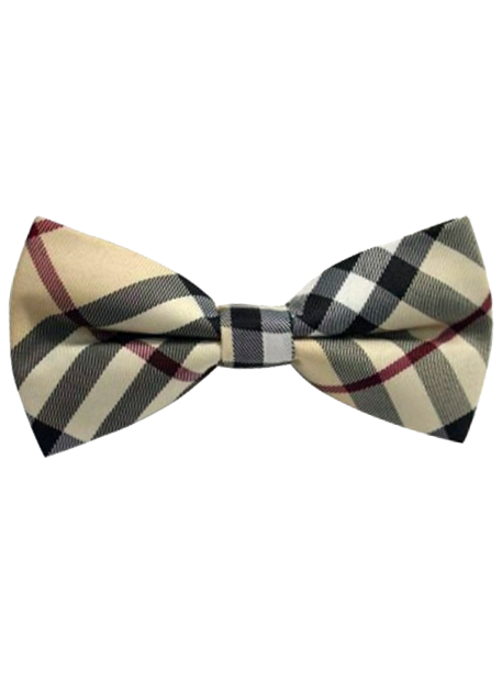 HauteButch Tan u0026 Russet Striped Bow Tie - Striped Bow Tie PNG