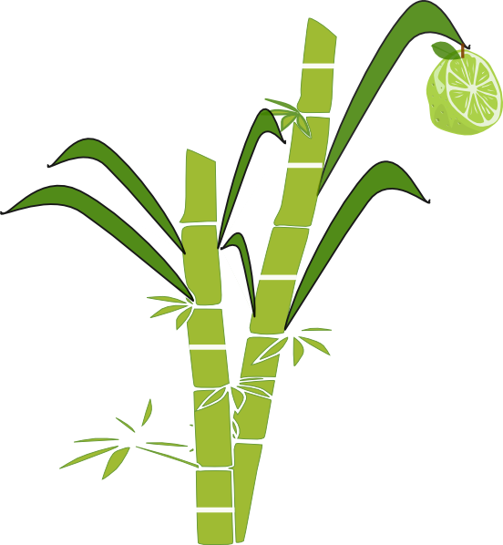 Sugar Cane PNG Black And White - 59653