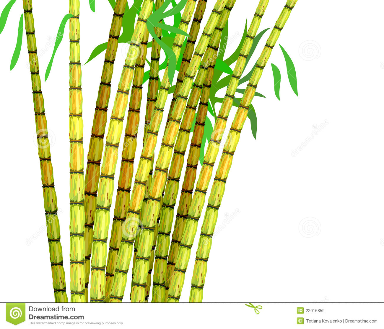 Sugar Cane PNG Black And White - 59658