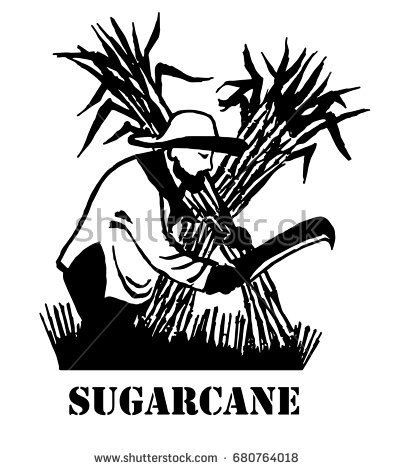 Sugar Cane PNG Black And White - 59655