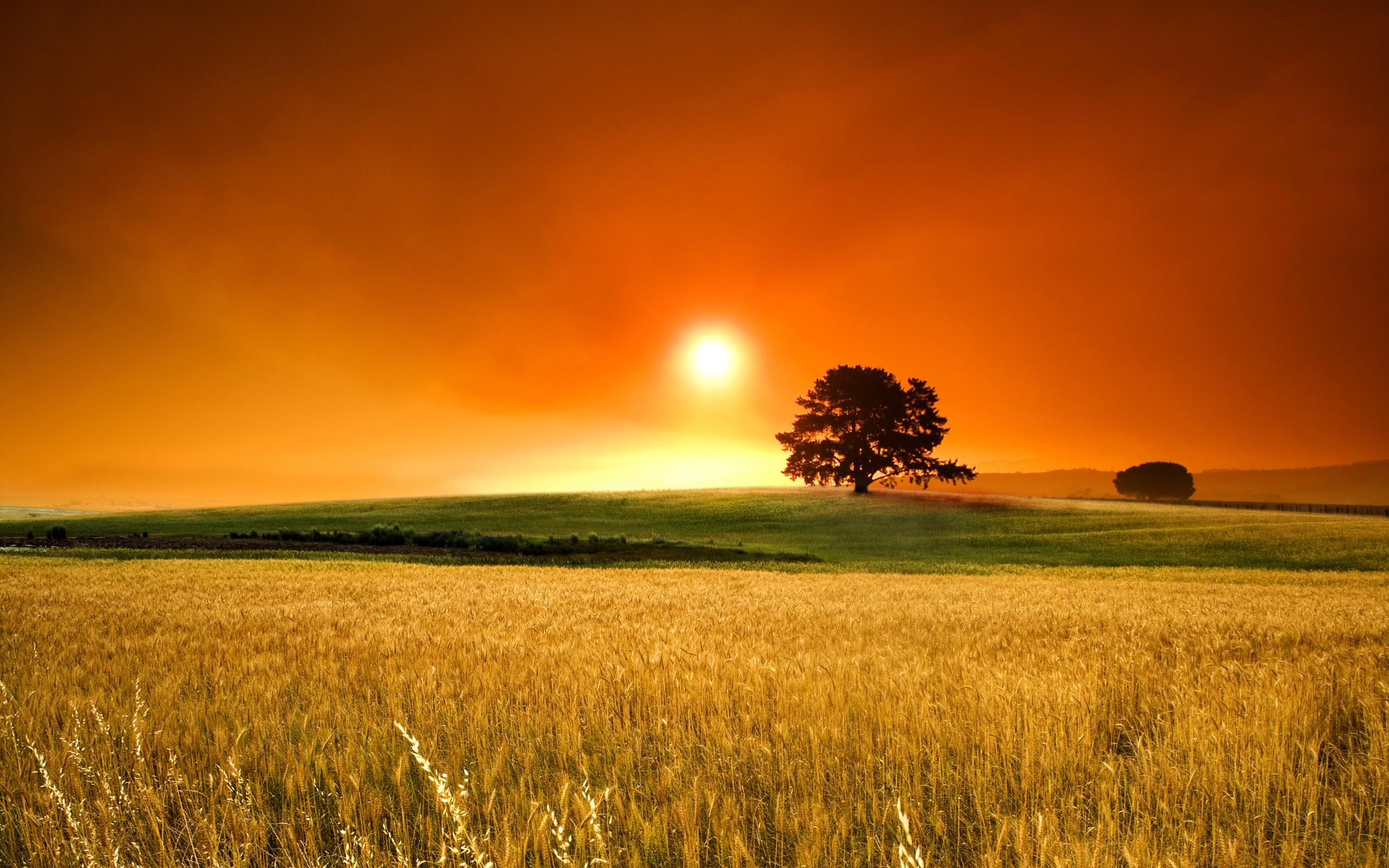 Hd wallpaper - Sunset PNG HD