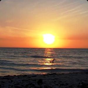 Sunset Ocean Live Wallpaper HD - Sunset PNG HD
