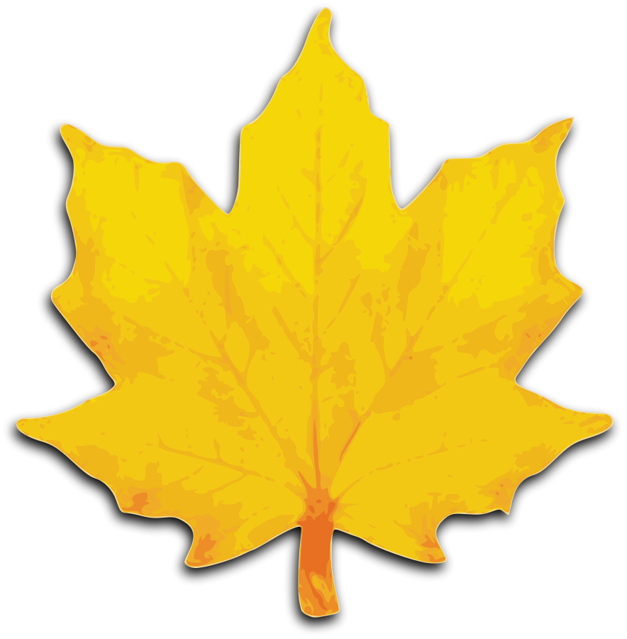 pin Leaf clipart sycamore tree #7 - Sycamore Tree Leaf PNG