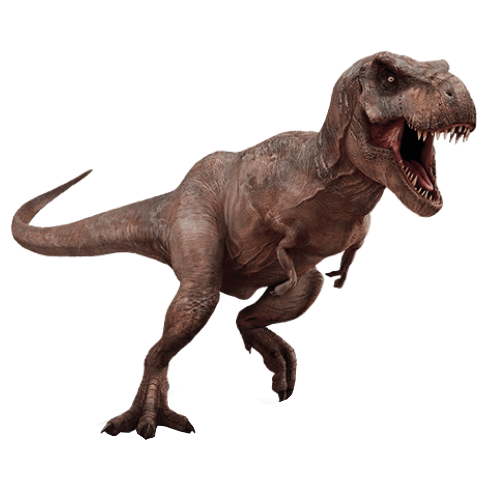 T Rex Dinosaurs PNG - 76020