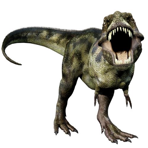 T Rex Dinosaurs PNG - 76019