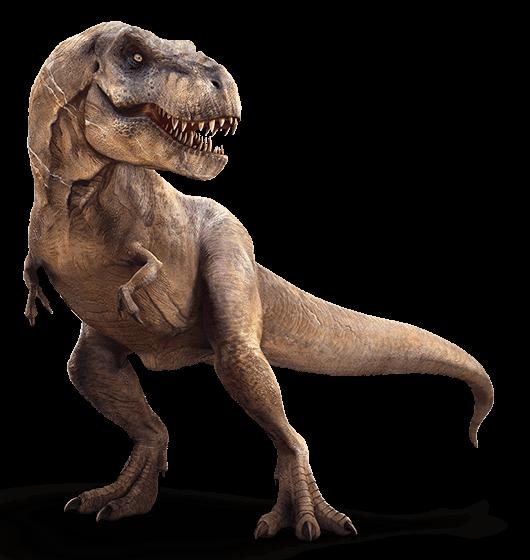 T-Rex.png - T Rex Dinosaurs PNG