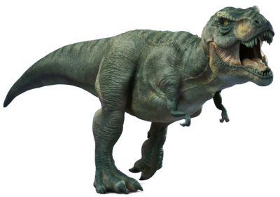 T Rex Dinosaurs PNG - 76024