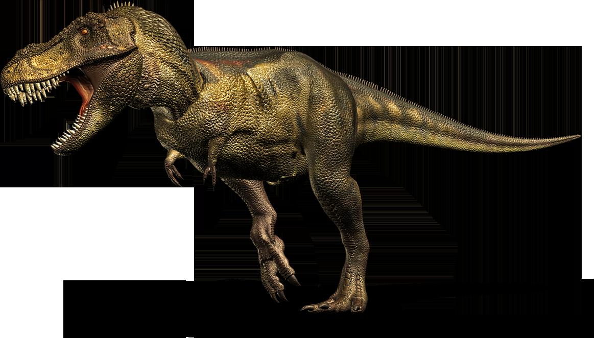 T Rex Dinosaurs PNG - 76017