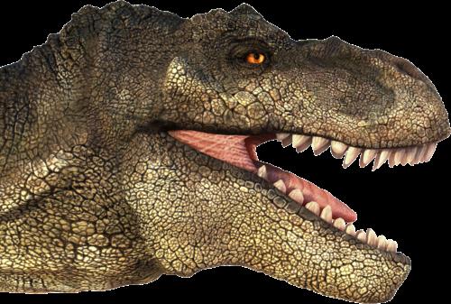 T Rex Head PNG - 76382