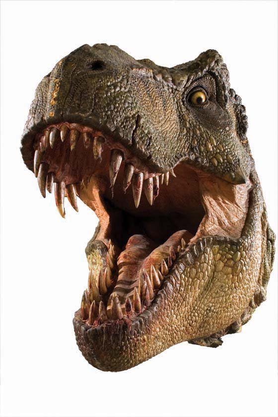 Filename: 5467816_1_l.jpg - T Rex Head PNG