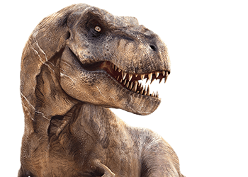 Intermediate Gods - T Rex Head PNG