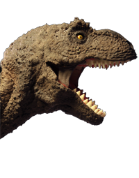 . PlusPng.com task of animating that makes stop motion projects take so long to  create, in this case most of our time was spent constructing the dinosaur  models. - T Rex Head PNG