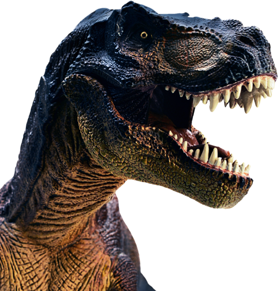tina headshot trex rehabstudio national geographic kids - T Rex Head PNG