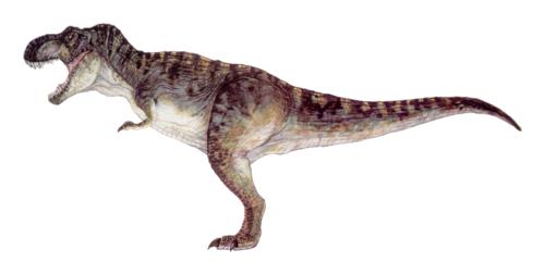 T Rex PNG HD - 128902