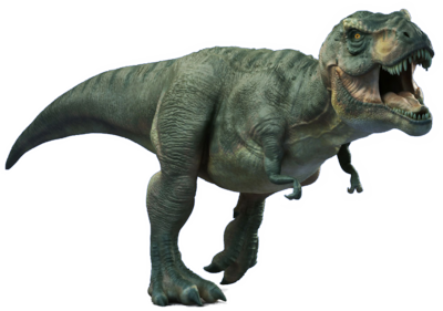 T Rex Dinosaur Facts Dinosaurs Pictures and Facts - HD Wallpapers - T Rex PNG HD