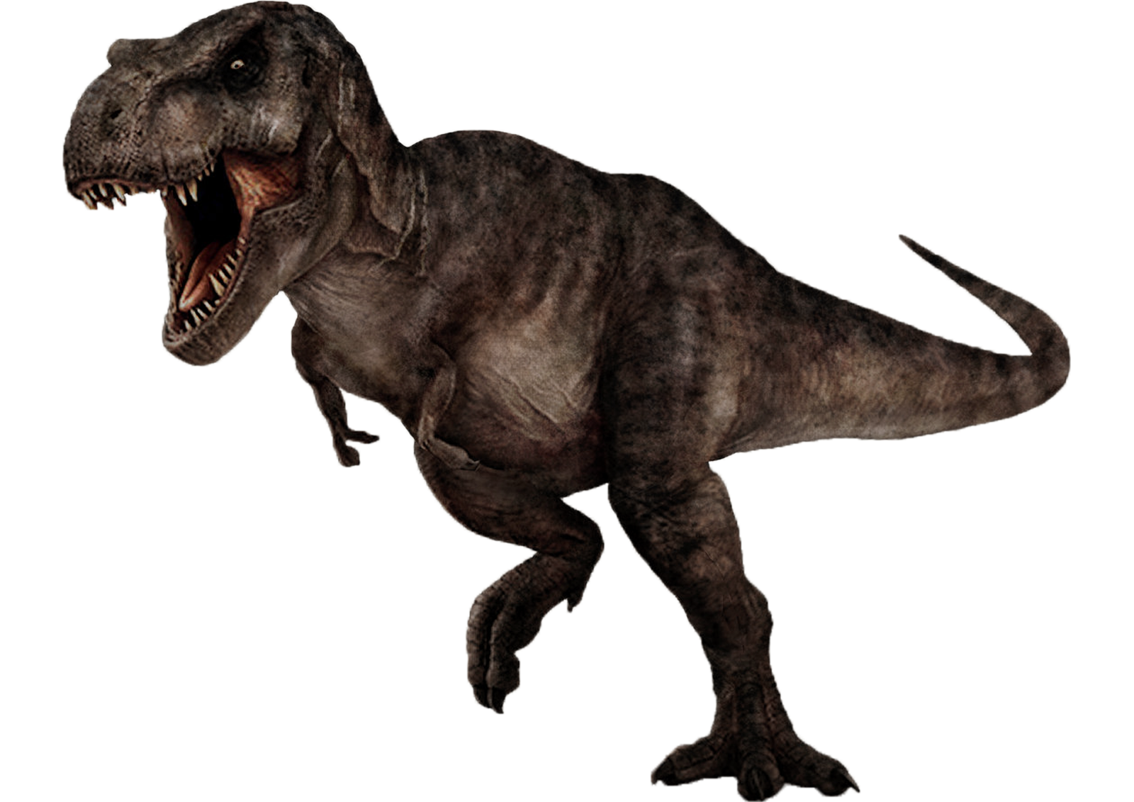 Tyrannosaurus rex 2 by darbarrrr - T Rex PNG HD