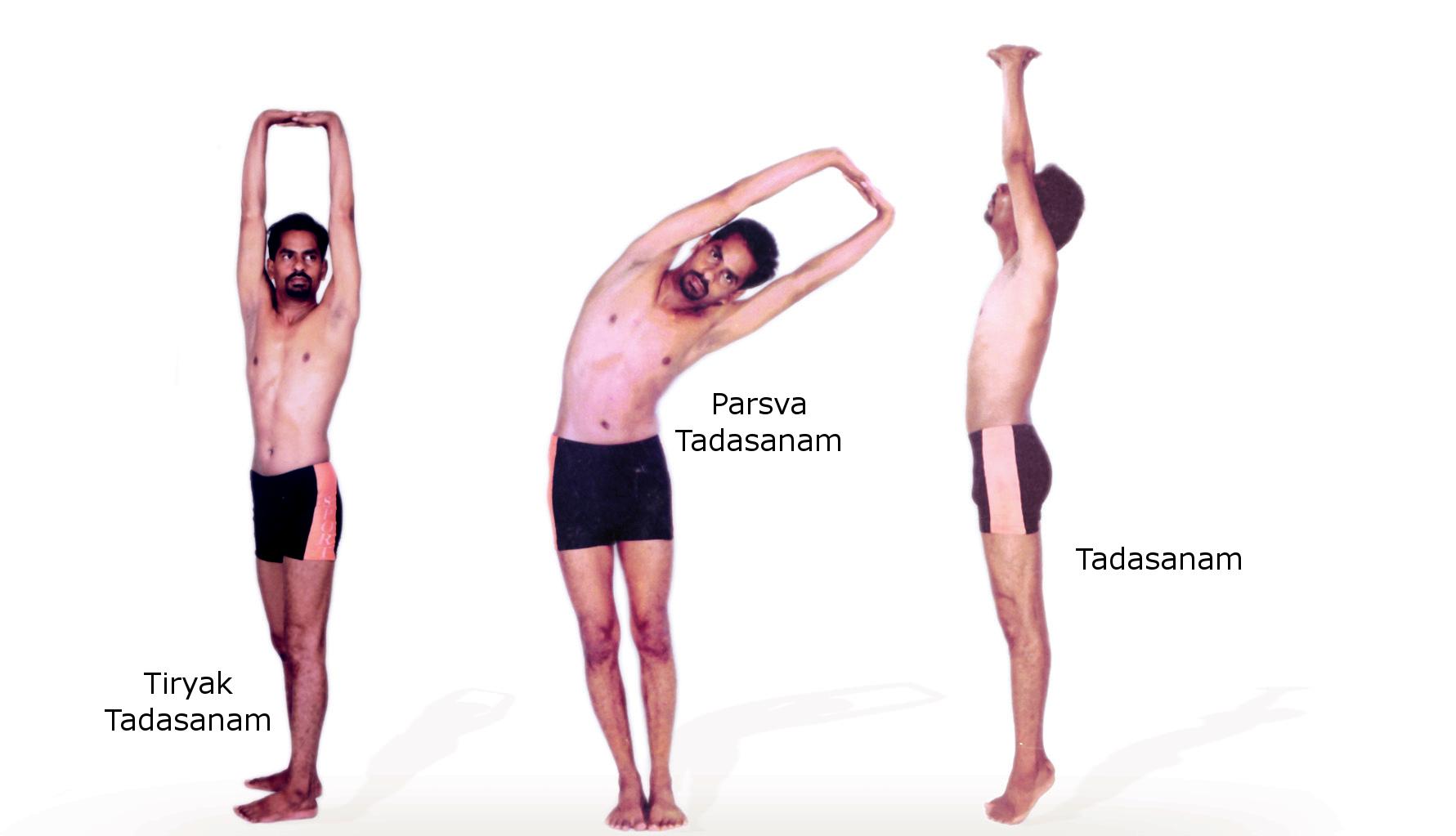 Tadasana Yoga Pose PNG - 60681