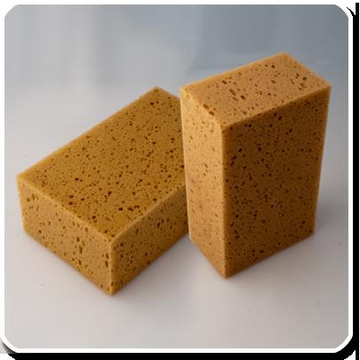 No. 904 - Sponge - Tafelschwamm PNG