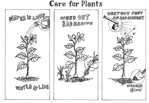 plants u201c - Taking Care Of Plants PNG Black And White