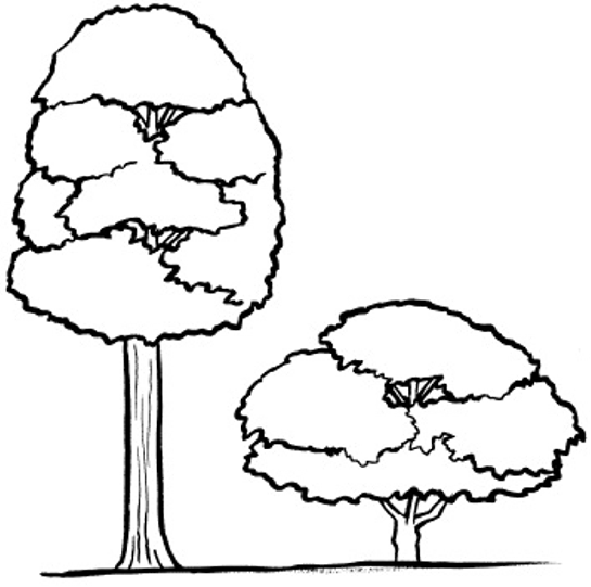 Tall And Short Objects PNG - 166593