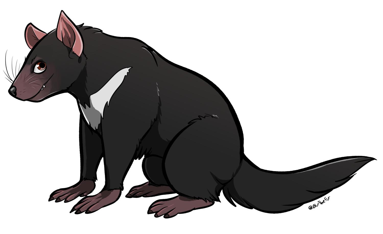 Tasmanian Devil PNG HD - 125699