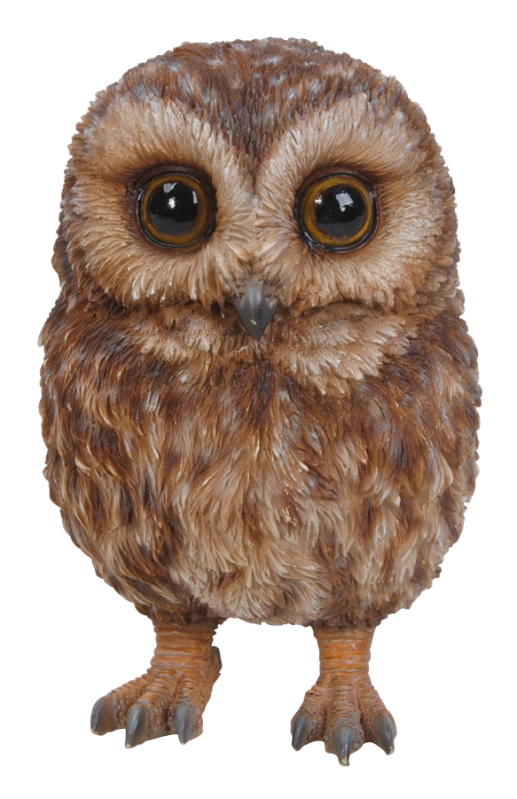 Image of Pet Pals Baby Tawny Owl - Resin Garden Ornament - Tawny Owl PNG