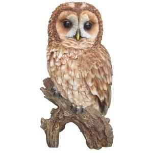 Tawny Owl Ornament by Vivid Arts - Tawny Owl PNG