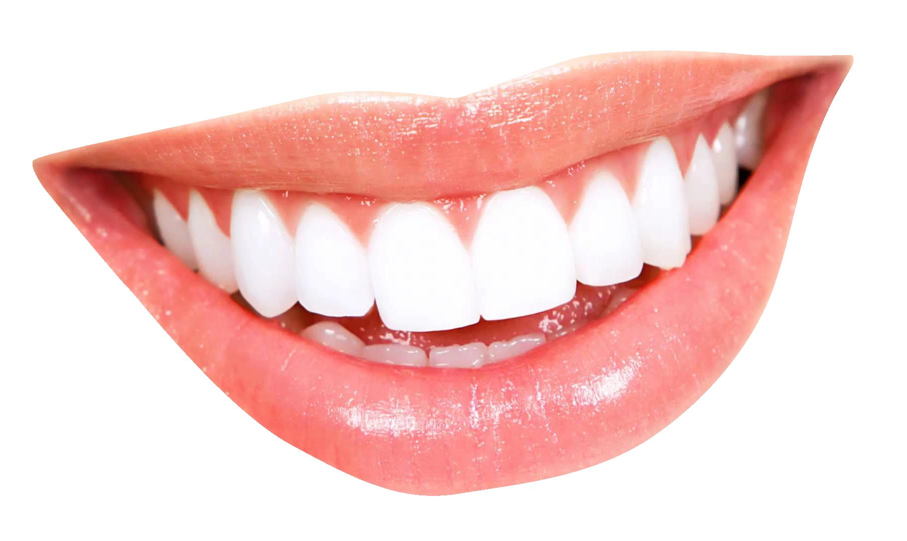 Teeth PNG - 18644