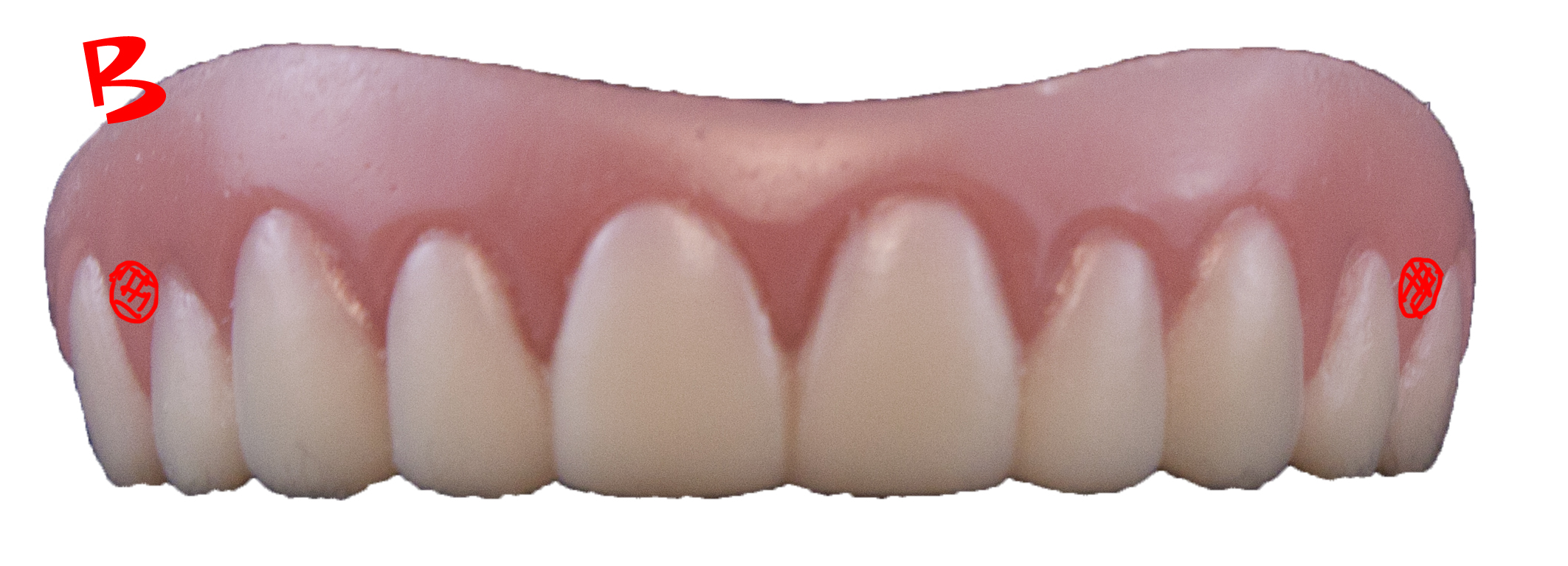. PlusPng.com Instant_Smile_Teeth_Size_Small.png · Teeth Change 2.jpg PlusPng.com  - Teeth PNG HD