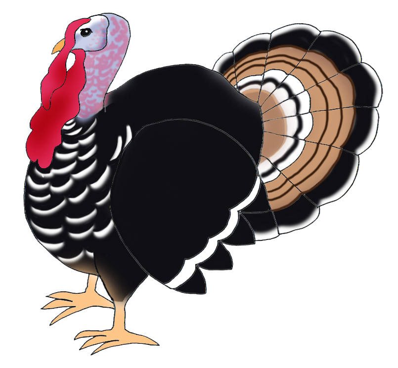 Thanksgiving pumpkins · Thanksgiving clip art turkey bird - Turkey Bird PNG