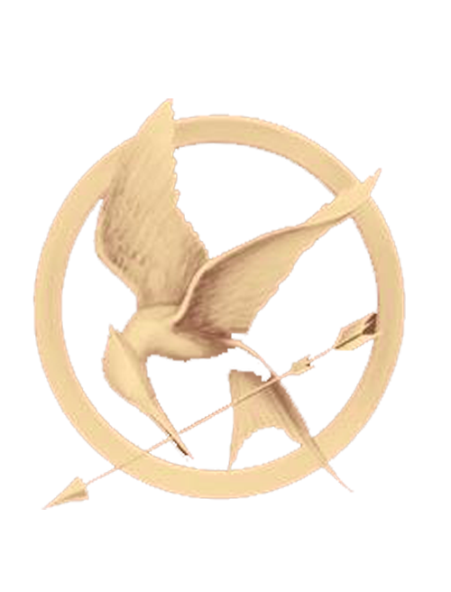 The Hunger Games Symbol PNG by TulinaMariana PlusPng.com  - The Hunger Games PNG