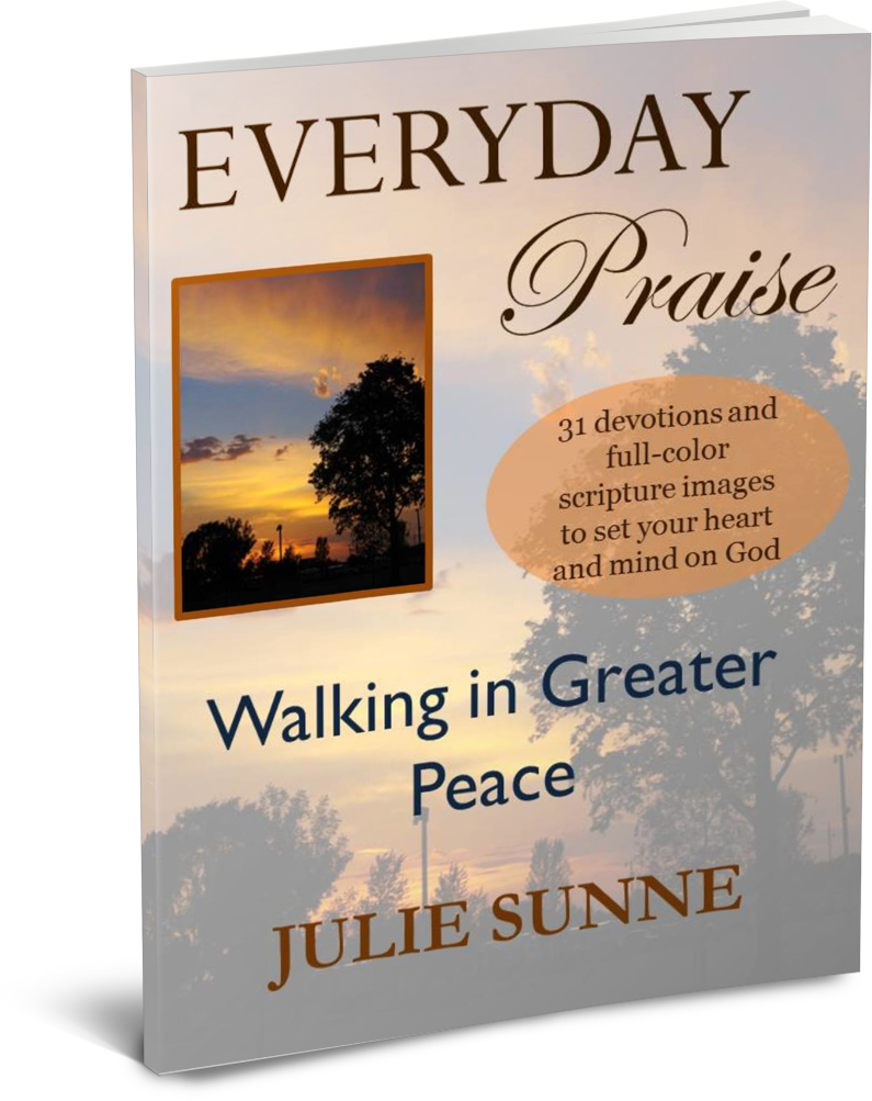 Everyday Praise Devotional - Thin Book PNG