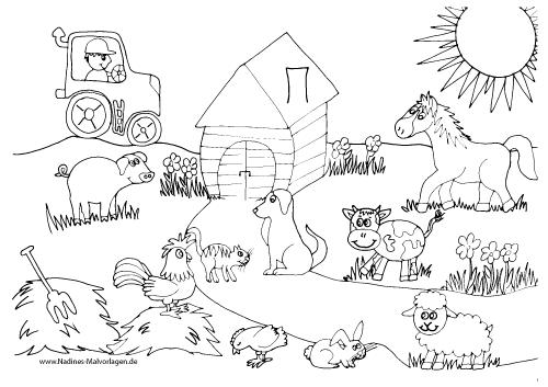 Tiere Auf Dem Bauernhof Png Transparent Tiere Auf Dem Bauernhofpng