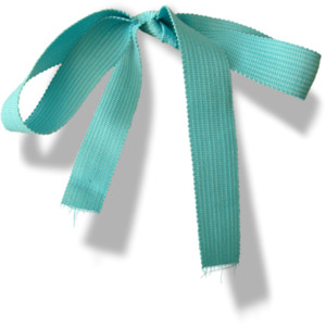 Tiffany Blue Bow PNG - 57382