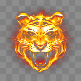 HD Tiger Picture Fierce Flames, Ferocious Tiger, Flame Steller, Tiger PNG  And PSD - Tiger HD PNG